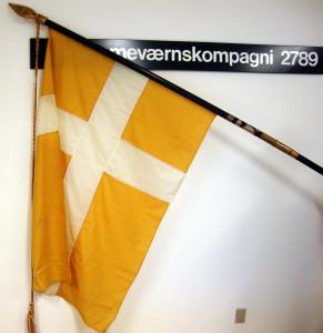 1-Flag af faldskærme